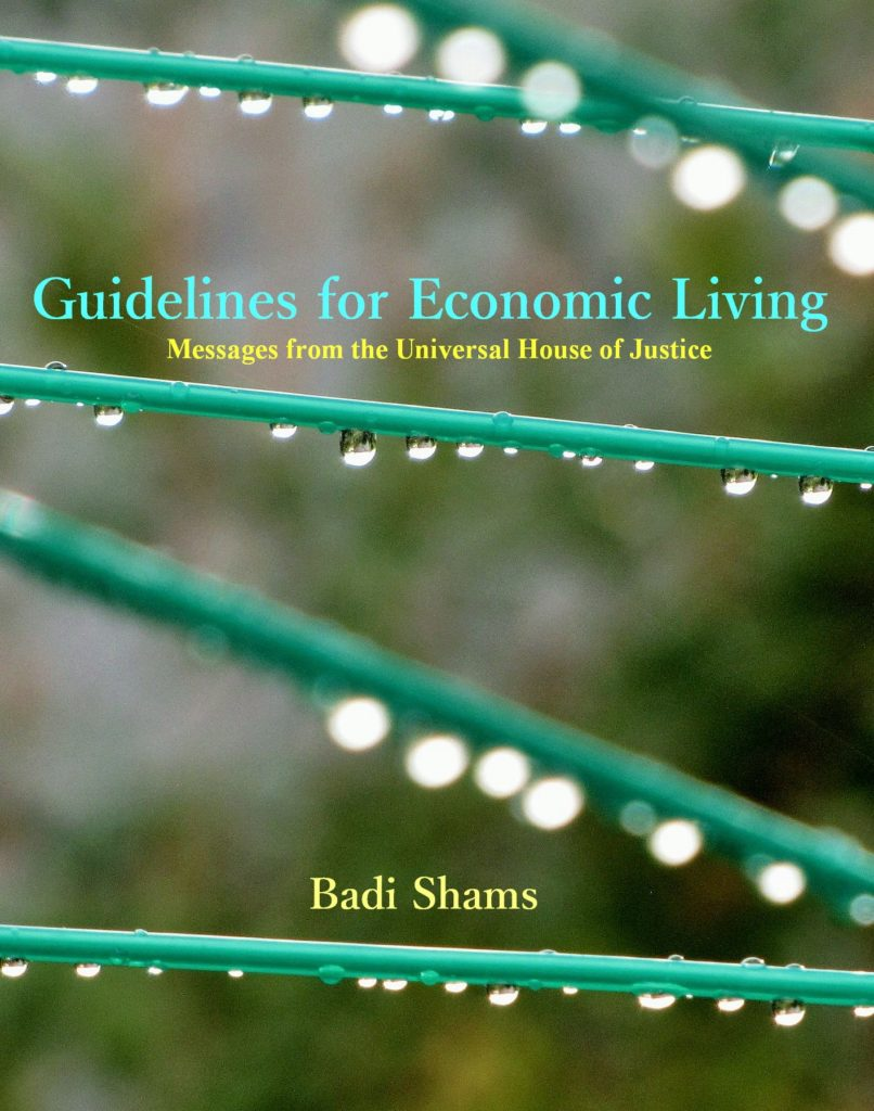 Guidelines for Economic Living